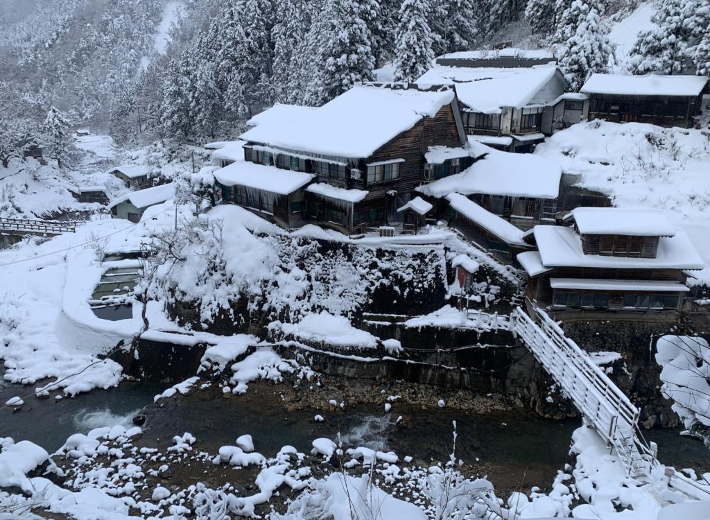 Snow Monkey Resort,Nagano