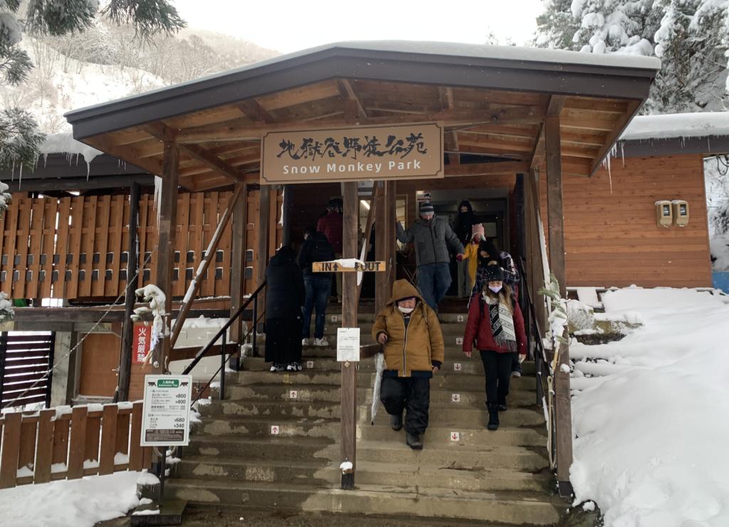 ลิงแช่ออนเซ็น Snow Monkey Resort,Nagano